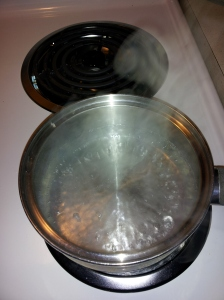 Bring 1 cup of water to a boil